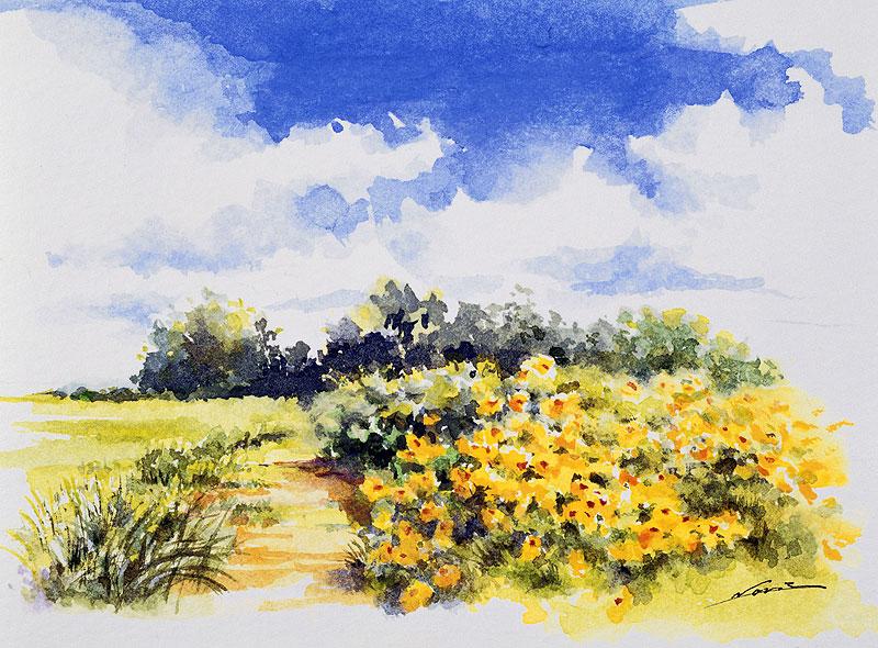 橋本のりえ 夏の空と草原と花の風景イラスト 風景イラスト