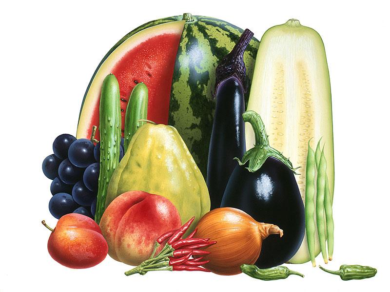 祝部征夫 レシピに活用!旬の食材サラダシリーズイラスト