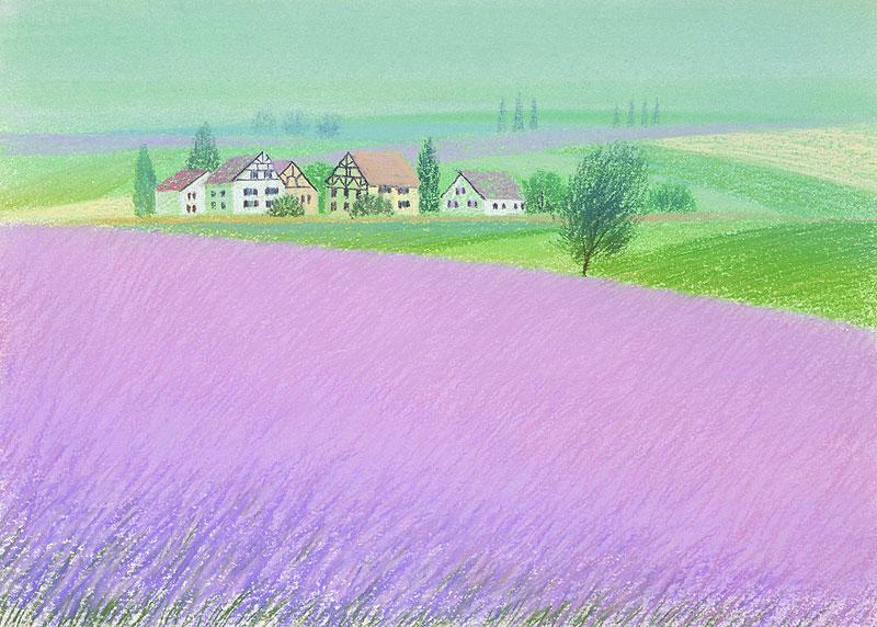 風景イラスト ラベンダーの丘 ...