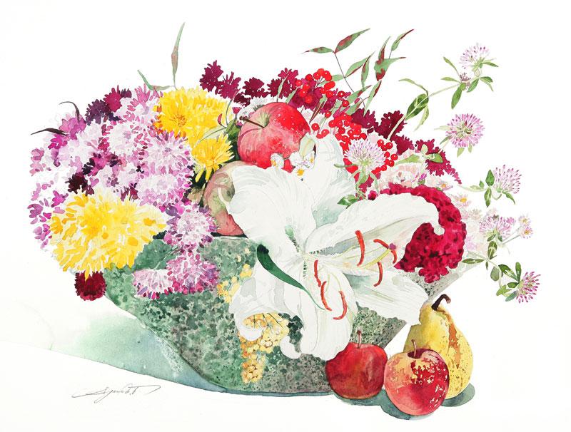 カサブランカ (植物)の画像 p1_4