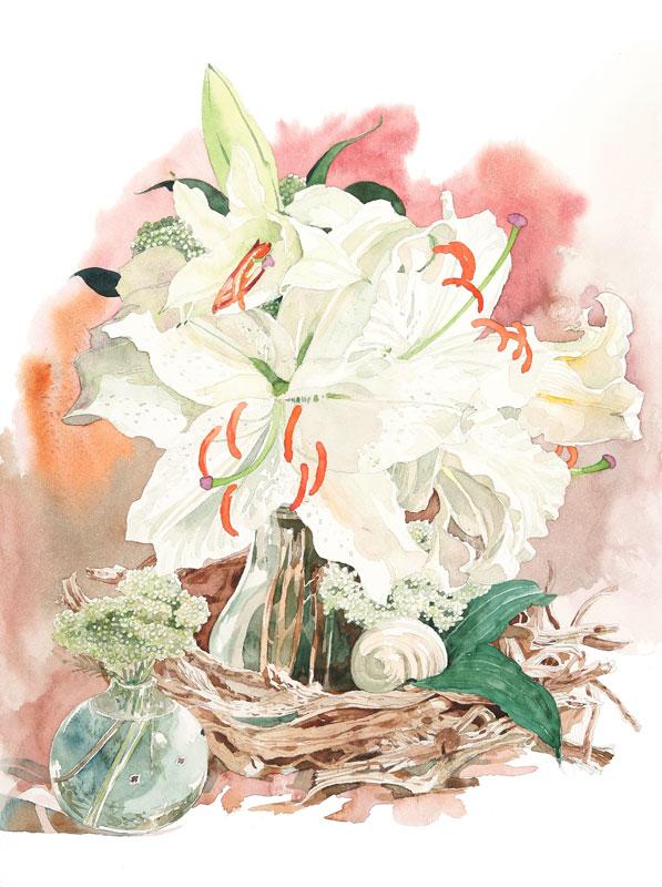 カサブランカ (植物)の画像 p1_1