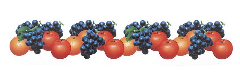 ライン・フレーム枠イラスト かわいいリンゴぶどうオレンジ果実のパターン