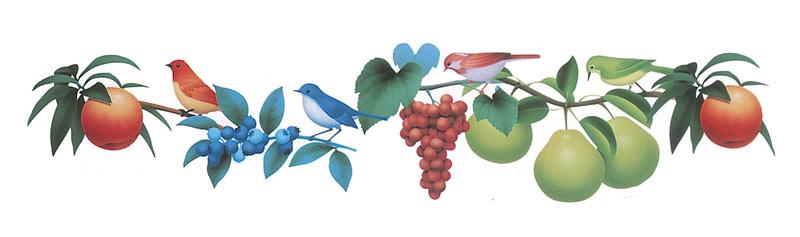 ライン・フレーム枠イラスト フルーツ果実とかわいい小鳥のパターン
